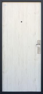 Borovica biela - pohľad z vonku